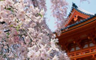Баня офуро: релакс по-японски