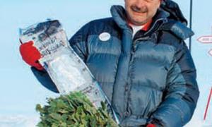 Замороженные веники: правда и вымысел: советы и отзывы